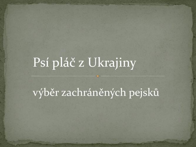 Psi plac z ukrajiny