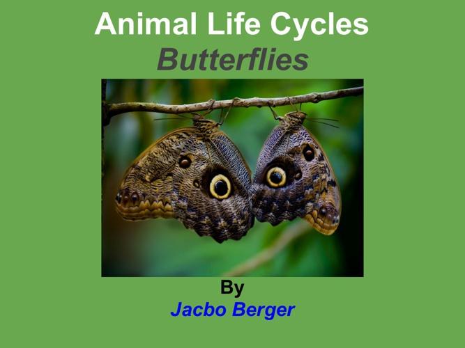 jacobo mariposa