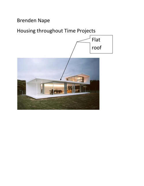 nape housing throught time project