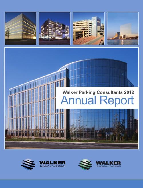 Annual Report Rough