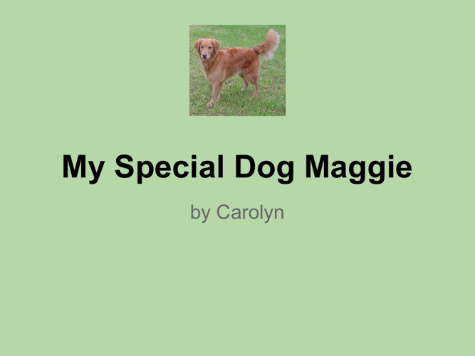 My Special Dog Maggie