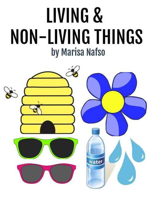 Living & Non-Living Things