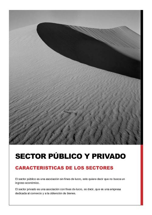 Sector pùblico y privado