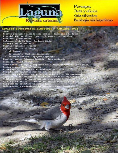 Laguna, revista urbana - octubre 2015