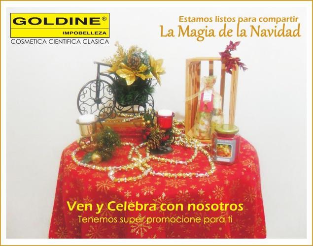 En Goldine la Navidad esta llena de Sorpresas y ofertas para ti.