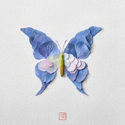 mariposeando - Raku Inoue