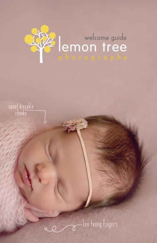Lemon Tree Welcome Guide