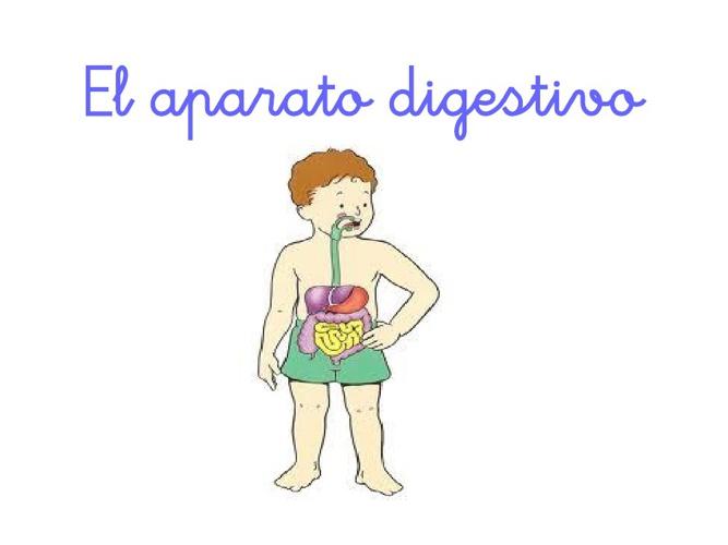 Aparato Digest
