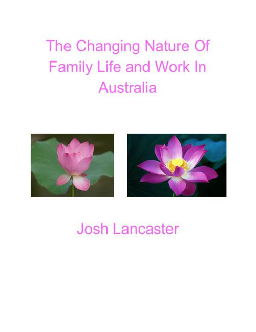 The Changing Nature of Family and Work Life E-Book