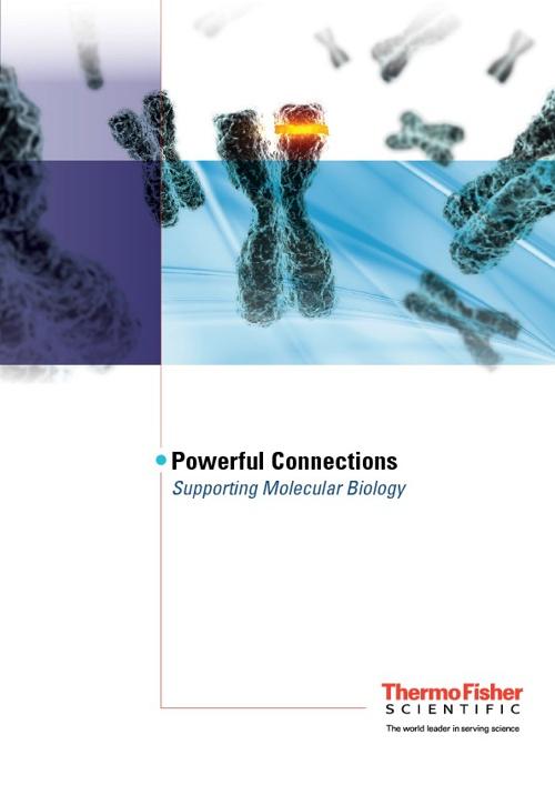 Molecular Biology Workflow