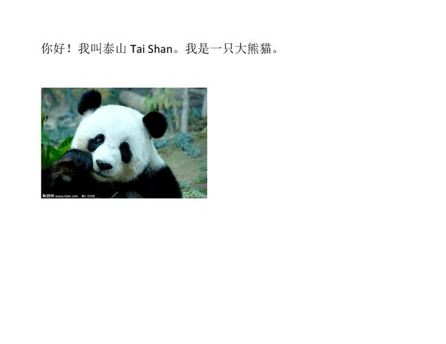 你好!我是大熊猫