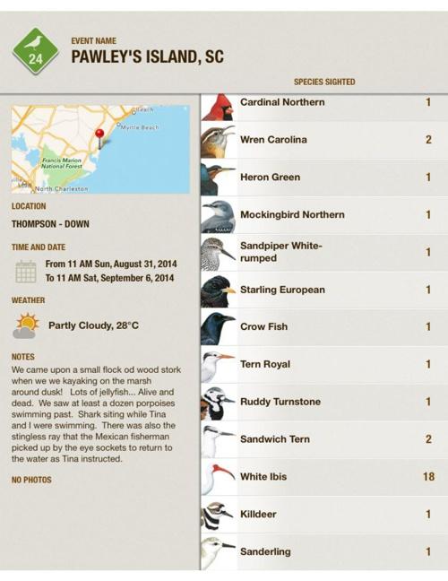 Pawley's Bird List