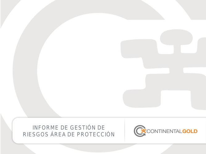 Informe Gestión de Riesgos v.1.3