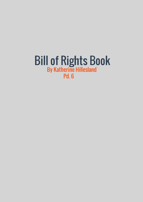 Bill Of Rights Book