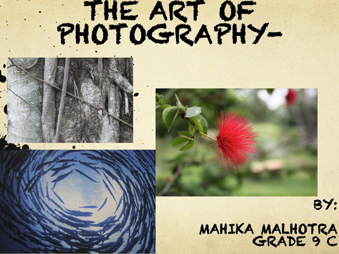 Photography I Book