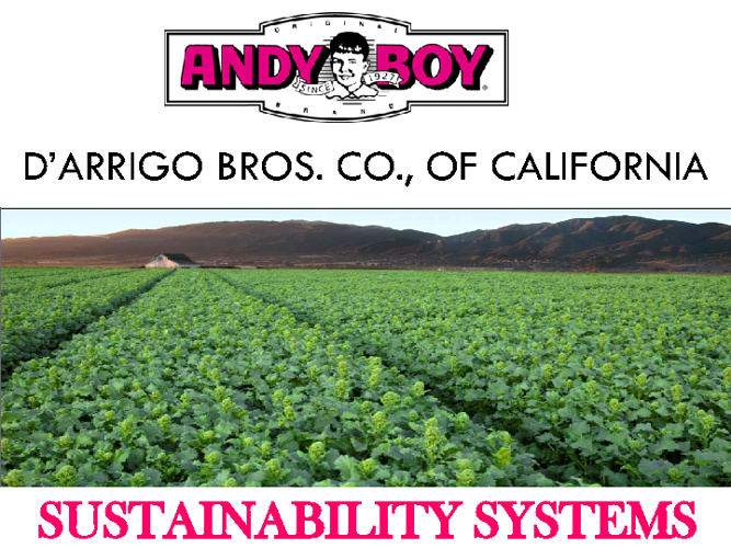 Sustainability Systems