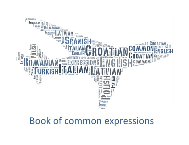 Book of common expressions