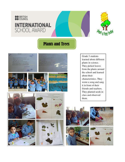 ISA Program: Plants and trees (12th Primary school of Peristeri