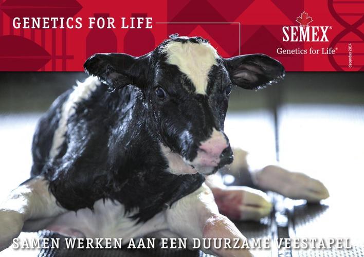 Nieuwsbrief Vlaanderen december 2014