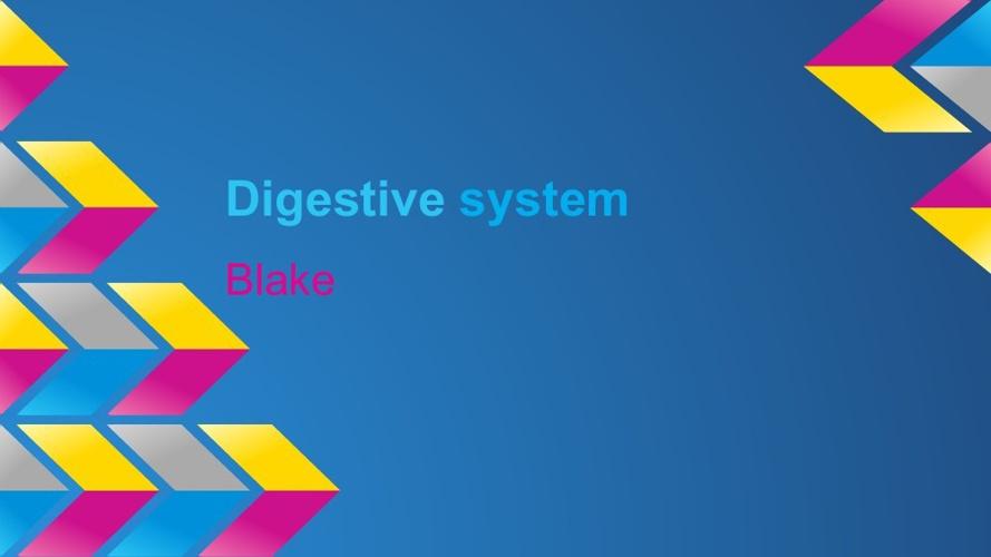 digeostive system