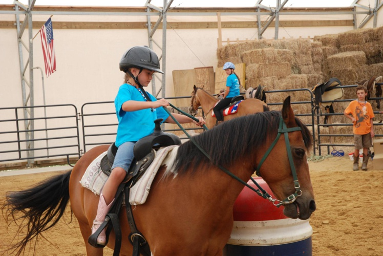 Hippotherapy Experience Diary
