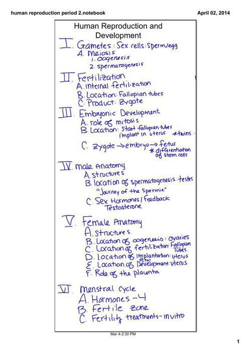 human repro notes