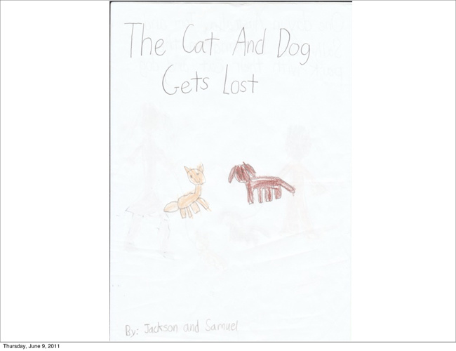 The Cat And The Dog Gets Lost  By: Samuel and Jackson