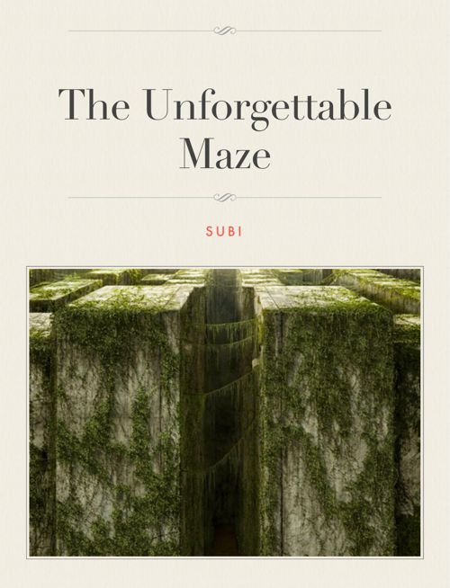 The Unforgettable Maze