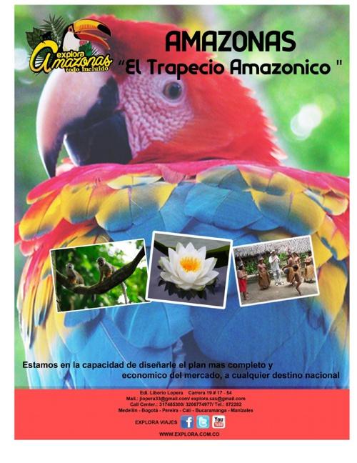 Viaje Terrestre Amazonas