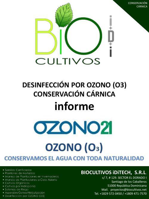 INFORME OZONO EN LA CONSERVACIÓN CÁRNICA