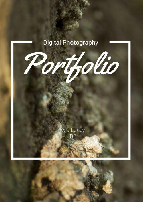 Digital Photography Portfolio
