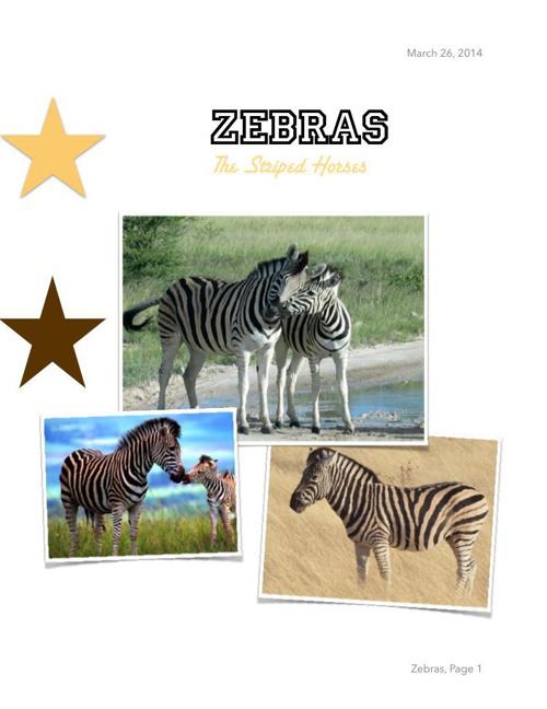 zebra presentation