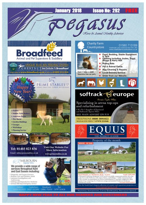 PEGASUS JAN 18  On-line eMagazine