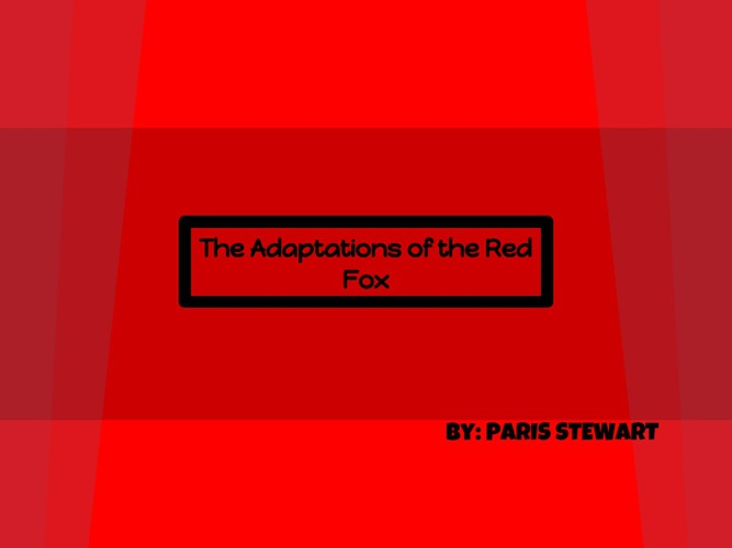 The Adaptations of the Red Fox