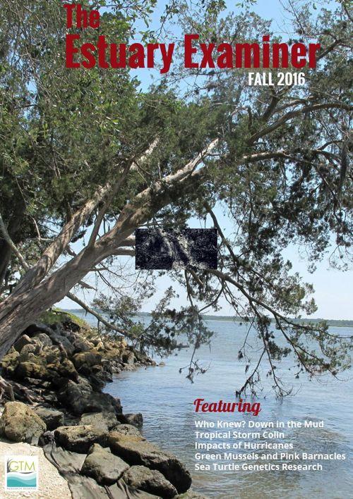 The Estuary Examiner, Fall 2016 Edition