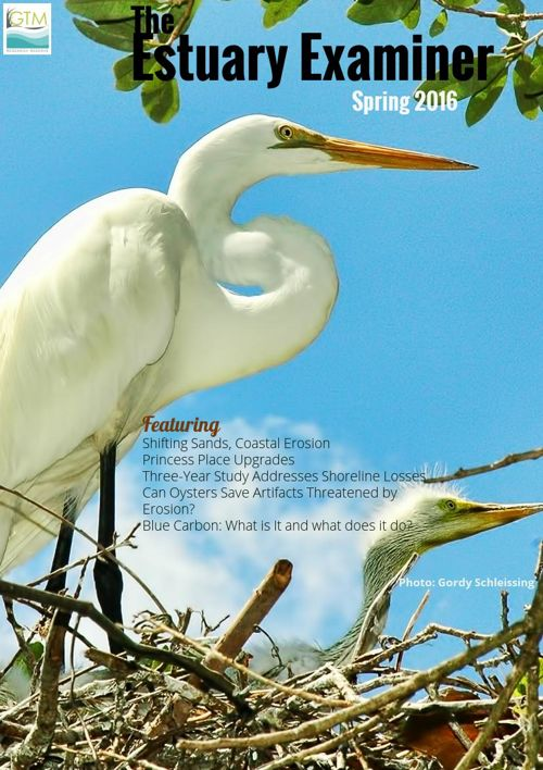 The Estuary Examiner, Spring 2016 Edition