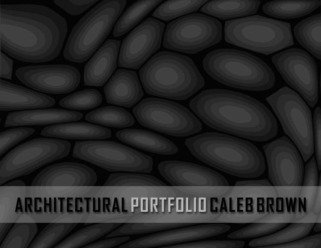 Caleb Brown Portfolio