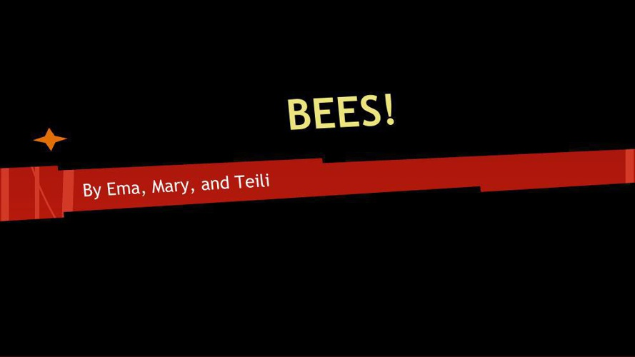 The Buzz On Bees!!