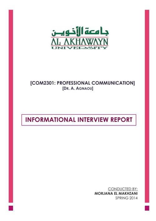 PROFESSIONAL COMMUNICATION REPORT