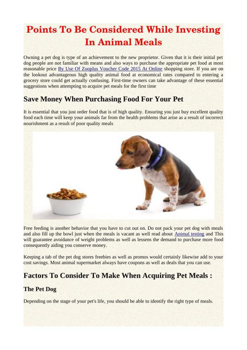 Points To Be Considered While Investing In Animal Meals
