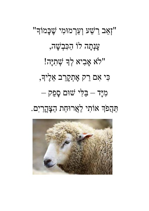 הזאב והכבשה