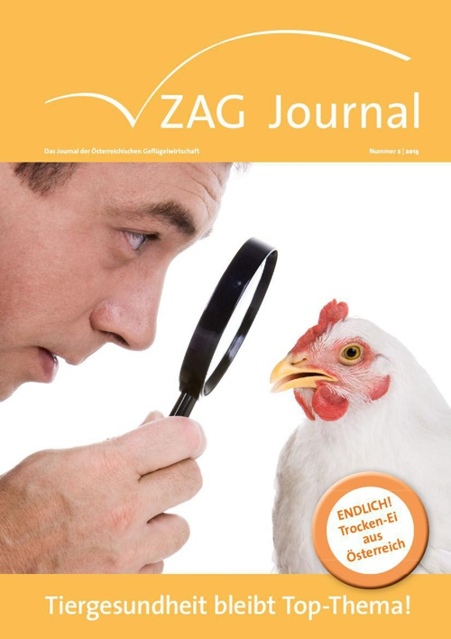 ZAG Journal 02 2013