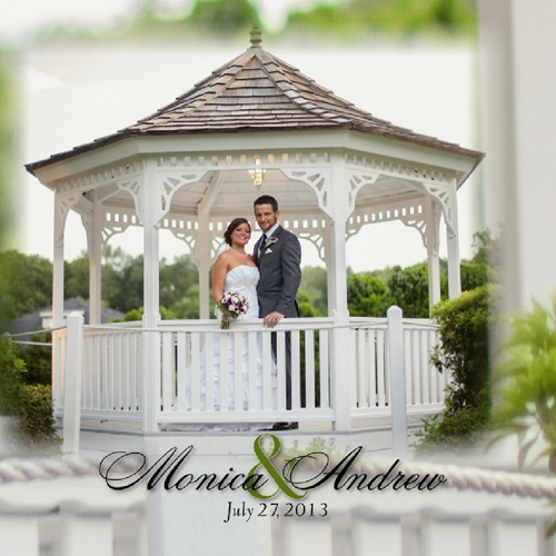 Monica and Andrew's Album