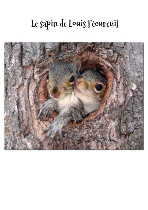 Le sapin de Louis l'écureuil