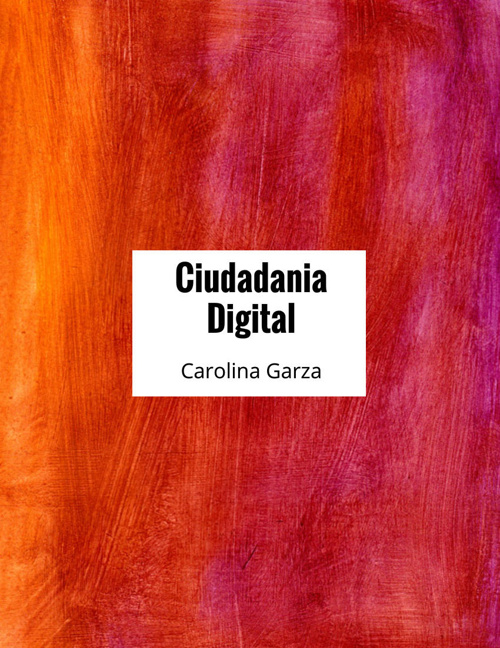 Copy of Ciudadania Digital Cons y Caro