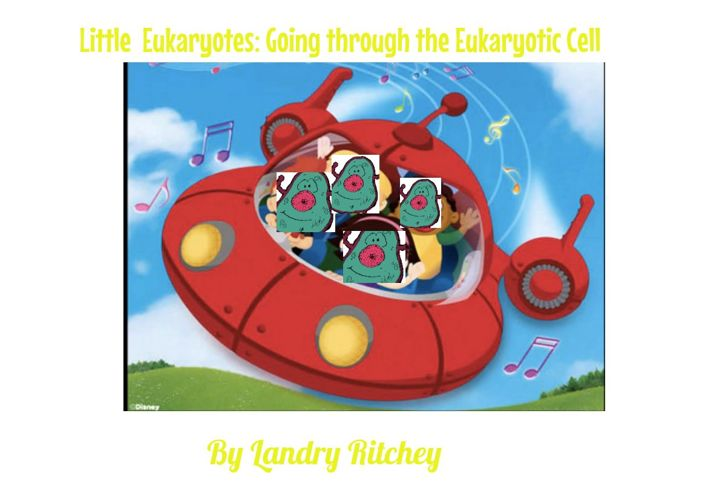 Little Eukaryotes: Explaining the cell