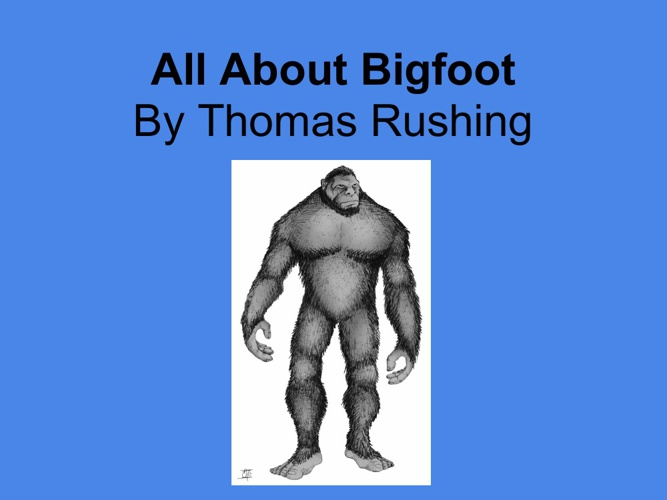 All About Finding Bigfoot