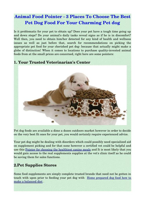 Animal Food Pointer - 3 Places To Choose The Best Pet Dog Food F
