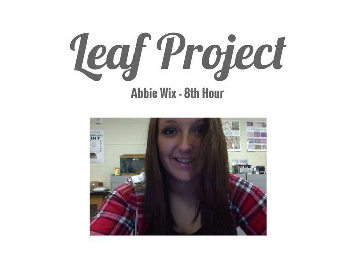 Leaf Project, Abbie Wix