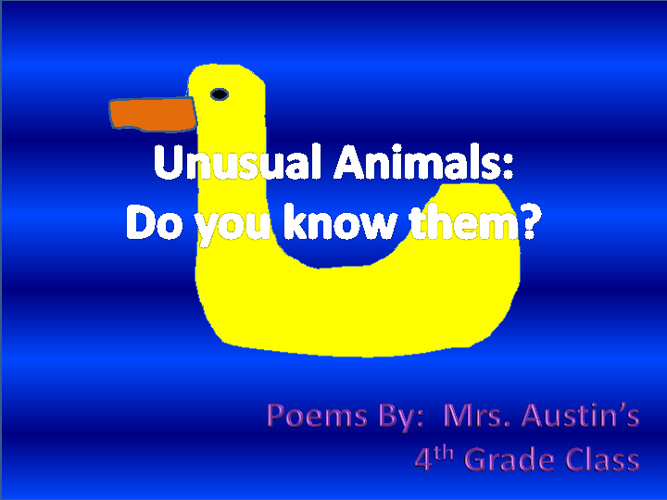 Unusual Animals